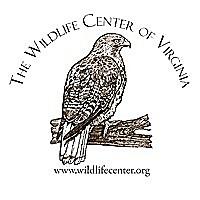 Wildlife Center of Virginia