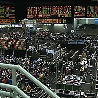 Commodities Bull Market