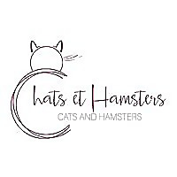 Cats and Hamsters | Montreal CPPS Blog