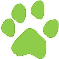 Alexandria Pet Care | Pet Sitting, Dog Walking, and Dog Training Blog