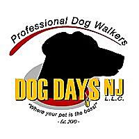 Dog Days, NJ | Professional Pet Walking Blog