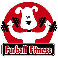 Furball Fitness | Dog Walking and Pet Care Blog