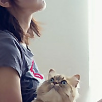 CatsandVR | VR Blog