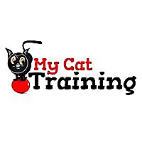 My Cat Training