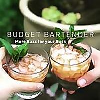 The Budget Bartender