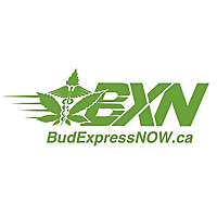 Bud Express NOW Blog