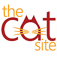 The Cat Site - Cat Products Reviews & Buying Guides