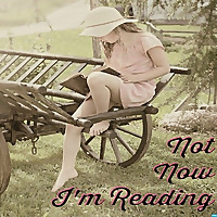 Not Now, I'm Reading | Your One-Stop Shop for All Things Genre