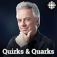 Quirks and Quarks