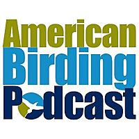 American Birding Podcast