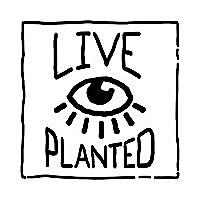 Live Planted   Practical Vegan Living