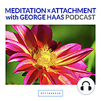 The Meaningful Life with George Haas Podcast