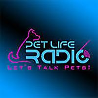 Pet Life Radio   Cattitude
