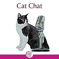 Cat Chat   Podcast by Cat Lovers
