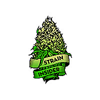 Strain Insider | Cannabis Business & Lifestyle Magazine
