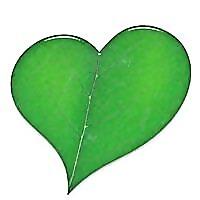 Organica Blog   Natural Organic and Cruelty Free