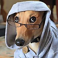 Your Lurcher