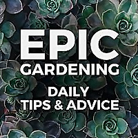 Epic Gardening | Daily Growing Tips and Advice