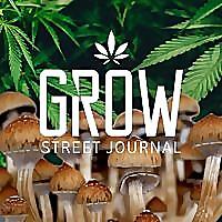 Grow Street Journal