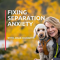 SubThreshold | Fixing Sepearation Podcast