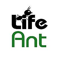Life Ant