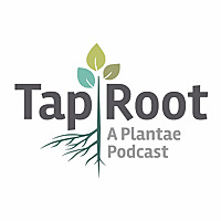 The Taproot | A Plantae Podcast Series