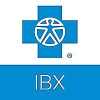 IBX Insights