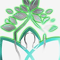 A Healer's Musings