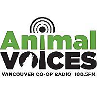 Animal Voices