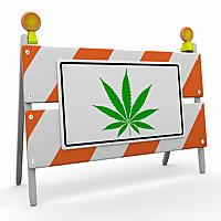 Drug Testing Courses