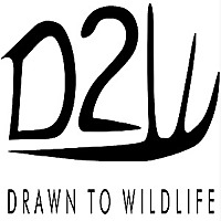 Drawn To Wildlife Podcast