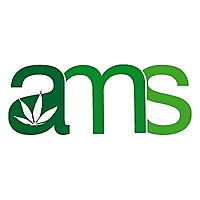 Amsterdam Marijuana Seeds Blog