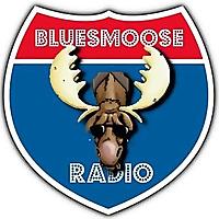 Blues Music   Blues Moose Radio