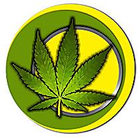 Weed.co.za