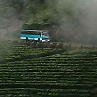 Travelmate Srilanka