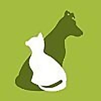 Homes Alive Pets Blog