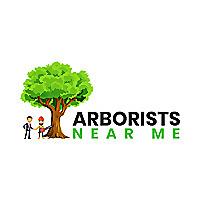 Arborists Near Me Blog