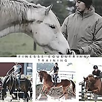Working From The Inside Out With Finesse Equestrian