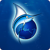 FISHSURFING