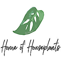 Home of Houseplants