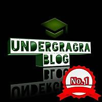 The Nigerian Undergraduate Hub