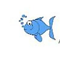 The Fish Tank Expert