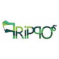 Frippo | Home Improvement Blog