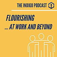 The Indigo Podcast