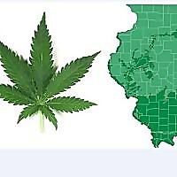 Pot in Illinois