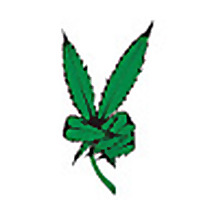 Legal Weed Dispensary