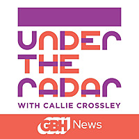 Under the Radar with Callie Crossley