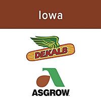Iowa Agronomy Update