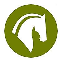 Equine Helper | Horseback Riding, Training, & Care