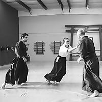 Aikido: Discussed